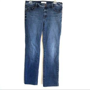 Loft Modern Straight Blue Jeans Women's Size 6